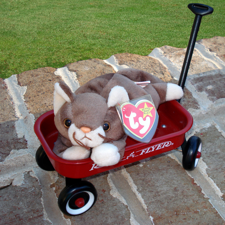 DiscoverQualityToday Com TY Cat Beanie Babies